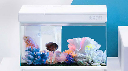 Smart Fish Tank at MiOT Crowdfunding Platform